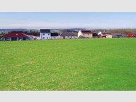 Terrain constructible à vendre à Waldwisse - Réf. 7182911