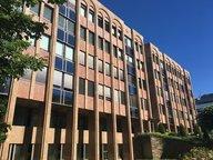 Bureau à louer à Luxembourg-Kirchberg - Réf. 5070927