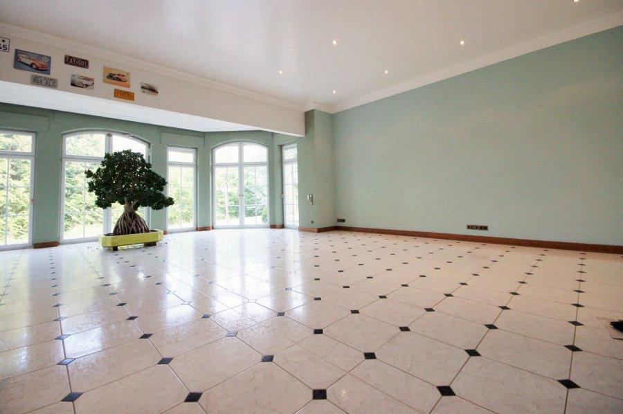 villa for buy 11 rooms 650 m² bitburg photo 4