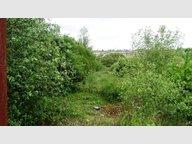 Terrain à vendre à Dommary-Baroncourt - Réf. 4518735