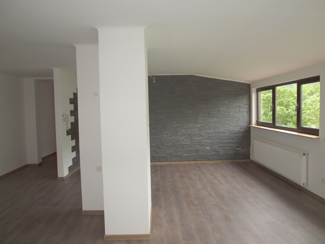 louer appartement 5 pièces 116 m² bollendorf photo 1