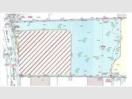 Terrain à vendre à Hettange-Grande - Réf. 4963663