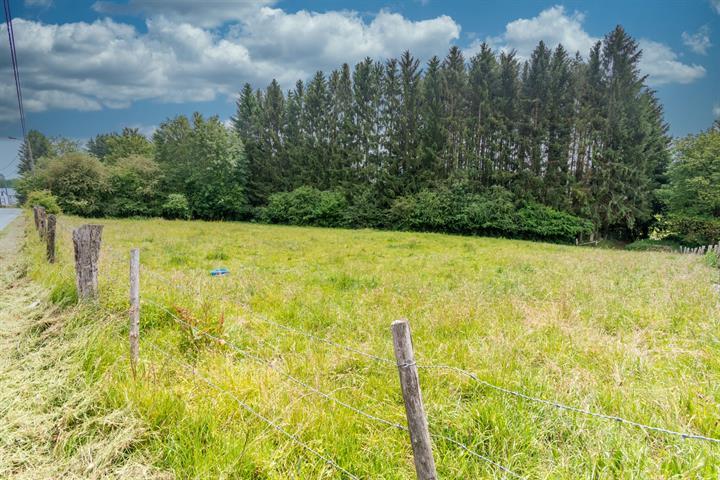 acheter terrain constructible 0 pièce 0 m² paliseul photo 1
