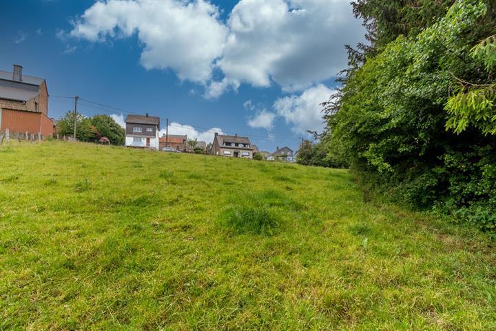 acheter terrain constructible 0 pièce 0 m² paliseul photo 3