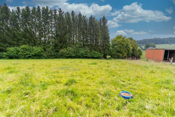 acheter terrain constructible 0 pièce 0 m² paliseul photo 4