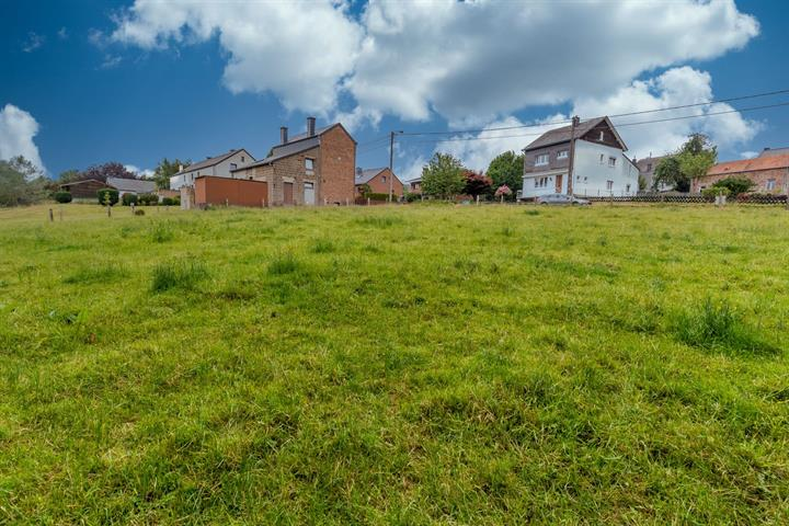 acheter terrain constructible 0 pièce 0 m² paliseul photo 6