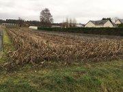Terrain constructible à vendre à Neuillé - Réf. 6590559