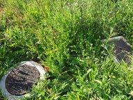 Terrain constructible à vendre à Valmont - Réf. 6739039