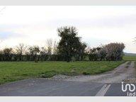 Terrain constructible à vendre à Bérig-Vintrange - Réf. 7170911