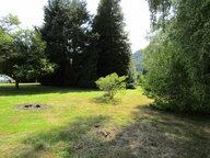Maison à vendre à Taintrux - Réf. 5402207
