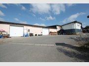 Entrepôt à louer à Luxembourg-Merl - Réf. 5963631
