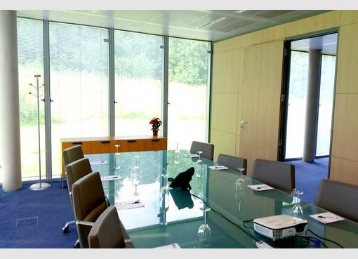 bureau louer luxembourg gasperich cloche d 39 or r f. Black Bedroom Furniture Sets. Home Design Ideas
