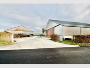Warehouse for sale in Boxhorn - Ref. 7020415