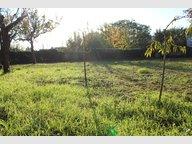 Terrain à vendre à Doué-la-Fontaine - Réf. 5132159