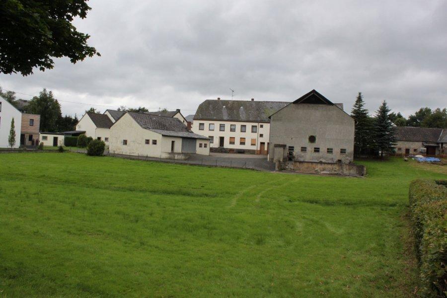 Renditeobjekt zu kaufen 4 Schlafzimmer in Arzfeld