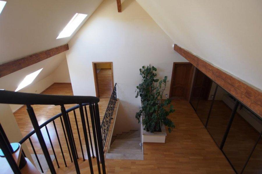 einfamilienhaus mieten 4 schlafzimmer 353 m² petit-nobressart foto 2