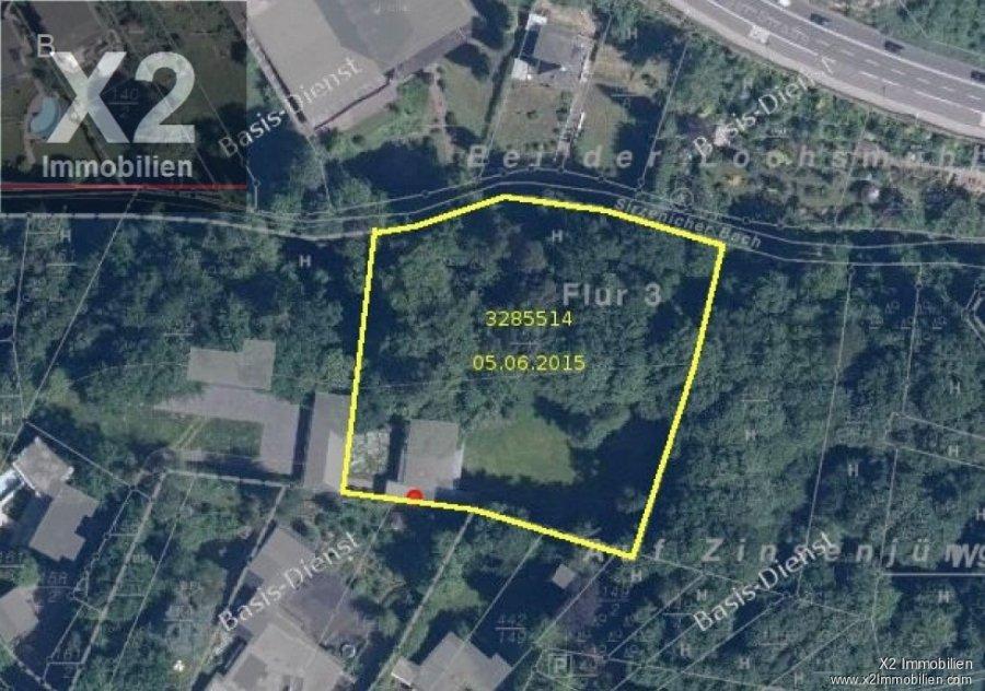villa kaufen 17 zimmer 645 m² trier foto 2