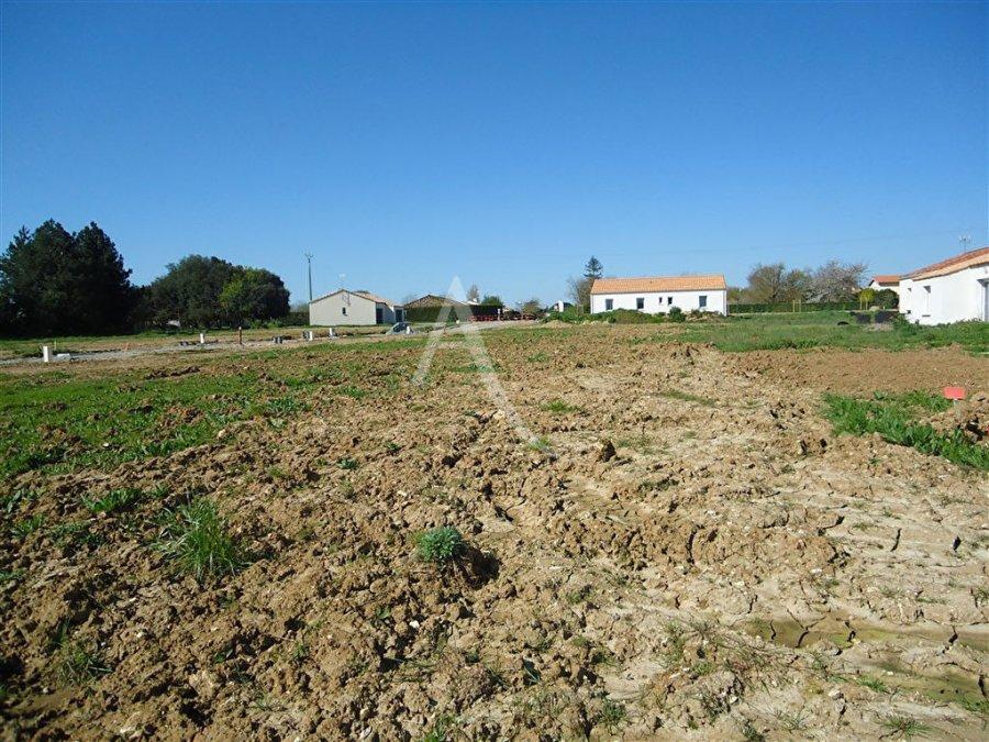 acheter terrain constructible 0 pièce 486 m² saint-hilaire-la-forêt photo 3