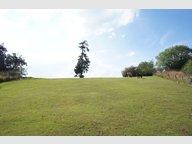 Terrain constructible à vendre à Hautbellain - Réf. 6145967
