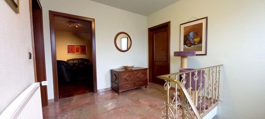 haus kaufen 4 schlafzimmer 750 m² belvaux foto 4