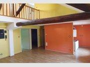 Immeuble de rapport à vendre F22 à Badonviller - Réf. 6376127