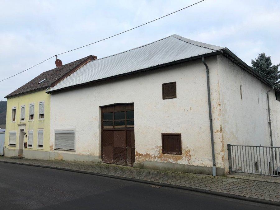 hof kaufen 7 zimmer 140 m² schankweiler foto 2
