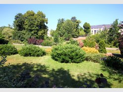 Terrain constructible à vendre à Steinfort - Réf. 6431183