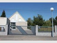 Maison à louer F6 à Wissembourg - Réf. 4998607