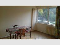 Studio à louer F1 à Homécourt - Réf. 6055631