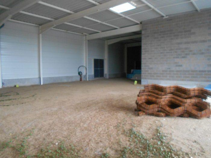 louer immeuble de rapport 0 pièce 1267 m² stenay photo 4