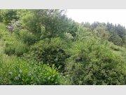 Terrain constructible à vendre à Bar-le-Duc - Réf. 4738767
