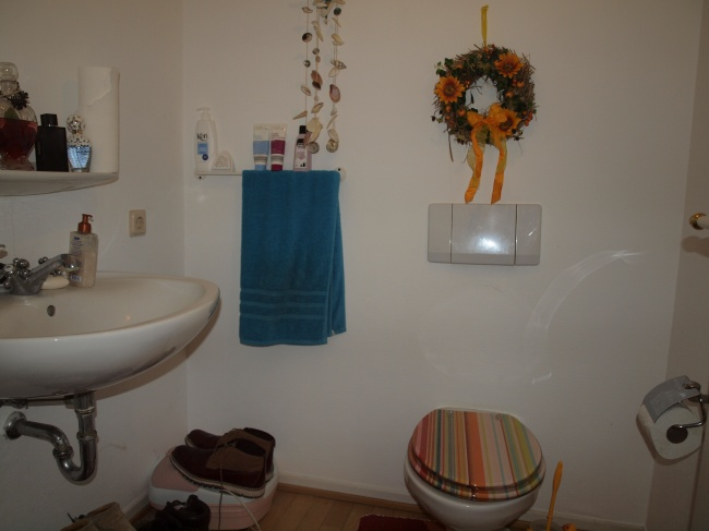 louer duplex 7 pièces 168 m² bitburg photo 3