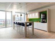 Bureau à louer à Luxembourg-Centre ville - Réf. 6339807