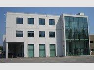 Bureau à louer à Luxembourg-Merl - Réf. 5955823