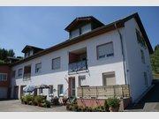 Appartement à louer 2 Chambres à Echternacherbrück - Réf. 5982703