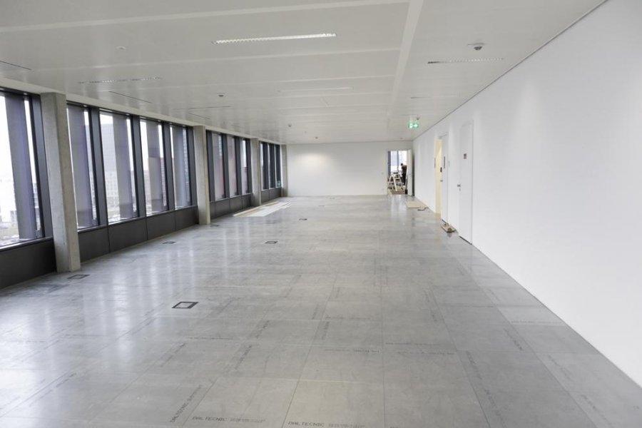 büro mieten 0 schlafzimmer 387.46 m² belval foto 4