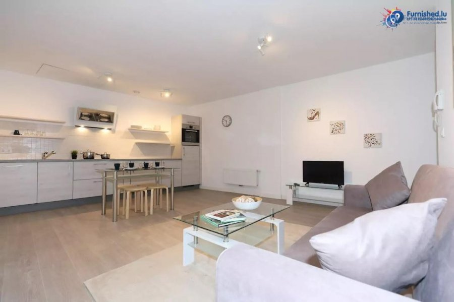 louer appartement 1 chambre 60 m² luxembourg photo 1