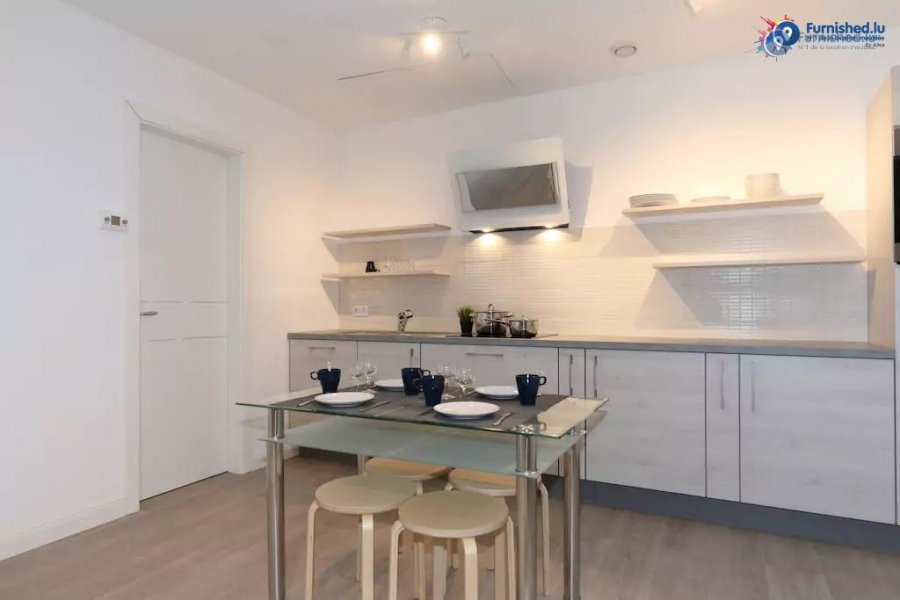 louer appartement 1 chambre 60 m² luxembourg photo 2