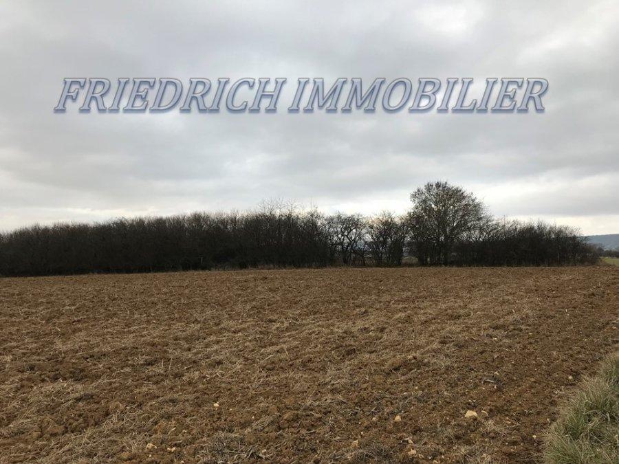 acheter terrain constructible 0 pièce 4331 m² apremont-la-forêt photo 1