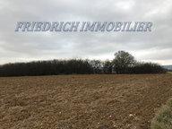 Terrain constructible à vendre à Apremont-la-Forêt - Réf. 6124543