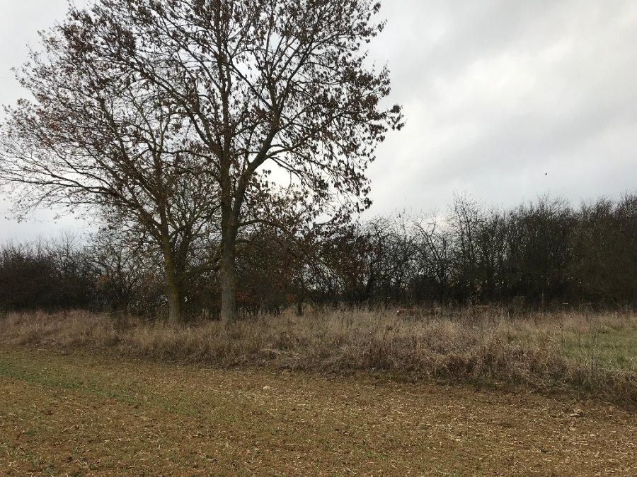 acheter terrain constructible 0 pièce 4331 m² apremont-la-forêt photo 4