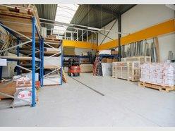 Entrepôt à louer à Pétange - Réf. 6092543