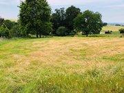 Terrain constructible à vendre à Baccarat - Réf. 6422271