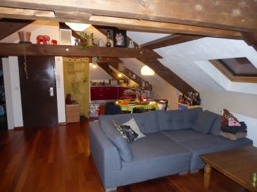 A vendre très bel appartement type F3 d'une surface de 80 m2 au sol,entièrement rénové, chauffage gaz, cuisine équipée, salle de bains, terrasse, cave, place de parking