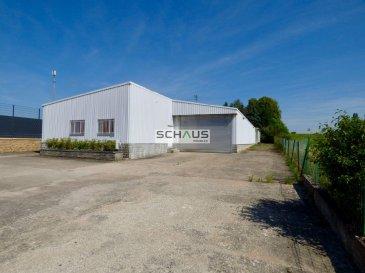 -- FR --  SCHAUS Immobilier vous propose à la location ce grand entrepôt d'une surface d'environ 600m2 dont environ 100m2 de bureaux, idéalement situé à Luxembourg-Merl, à proximité immédiate des axes de circulations et du centre-ville.  Les lieux sont équipés d'espaces sanitaires et d'une cuisine.  Une grande porte ( - 2.50m de hauteur et  - 4.50m de largeur) permet d'accéder à l'entrepôt. Un deuxième accès est garanti par une porte de garage à l'arrière du bâtiment.  La grande cour offre de nombreuses possibilités de stationnement.  Le chauffage est au mazout.  L'entrepôt est immédiatement disponible.  Nous sommes à votre disposition pour tout renseignement complémentaire et un rendez-vous de visite.   Ref agence :L0277