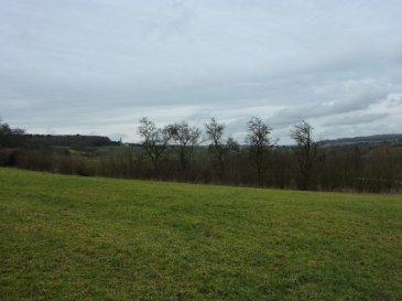 Nous vendons, route de BOUZONVILLE à SCHRECKLING, commune de HEINING LES BOUZONVILLE (Moselle),  à quelques mètres à peine de la frontière allemande, d\' ITTERSDORFF et SARRELOUIS ;  Un très beau terrain à bâtir d\'une superficie totale de 21.99 ares avec une très large ouverture sur rue. Vue imprenable sur la vallée de LEIDING et sur l\'Allemagne proche.  Il est situé hors lotissement. Ce terrain est libre de construction.  Il n\'est pas viabilisé.  CONTACT : ABEL IMMOBILIER au 03.87.36.12.24 ou directement le commercial Gérard STOULIG au 06.03.40.33.55  NB : Les frais d\'agence sont inclus dans le prix annoncé.