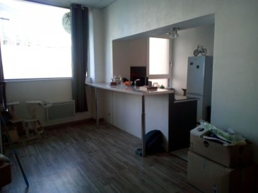 Appartement en rdc avec jardinet, comprenant entrée, cuisine ouverte sur séjour, 1 chambre, bureau, salle de bains, WC et cave. Stationnement et commerces à proximité.