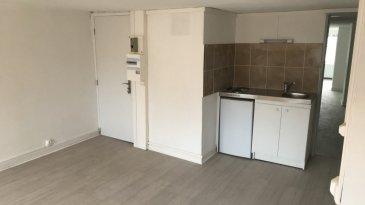 Situé au 112, rue des allemands, grand F1 cosi au 3ème étage offrant une entrée séjour avec espace kitchenette, une vaste chambre, une salle de douches avec WC. Chauffage, eau chaude et froide collectifs.