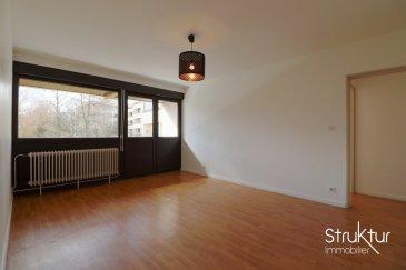 .  +++ SOUS COMPROMIS DE VENTE +++<br><br> Struktur Immobilier vous présente en exclusivité ce spacieux 2 pièces situé dans une résidence bien entretenue et proche de toutes commodités. (Bus / Gare à 2km, Ecoles, commerces, Pharmacie, supermarché, centre commercial MUSE, Parc de l\'amphithéâtre, accès A31/A4).<br><br> Cet appartement lumineux développe une surface habitable de 65 m2 et comprend un hall d\'entrée, une cuisine meublée avec loggia, un séjour de 19m2 avec loggia offrant une vue sur un parc, un dégagement avec de nombreux placards aménagés une chambre avec loggia, une salle de bains et un WC avec lave-mains.<br> Une cave et un box en sous-sol complètent cette offre. (+ parking commun à la résidence)<br><br> Les prestations : Chauffage individuel au gaz, Fenêtres double vitrage avec volets roulants (6 ans), installation électrique rénovée en 2011, porte palière 3 points (2011), Salle de bains (2011),  placards aménagés avec penderies et étagères.<br><br> Les espaces communs de la résidence : parking extérieur collectif, local à vélo / poussette, espaces verts.<br><br> Pour plus d\'informations ou organiser une visite, contactez-nous au 03 87 63 50 30<br><br> Nombre de lots : 49 lots dont 15 logements<br> Quote-part charges annuelles : 1617 EUR