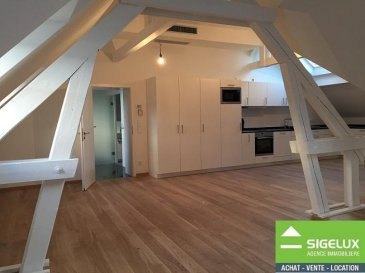 Appartement entièrement rénové en plein centre-ville.<br>Appartement idéal pour célibataire ou bien couple sans enfants.<br>Le bien se compose d\'un hall d\'entrée, d\'un W.C  séparé, d\'une salle de douche, d\'un grand espace living cuisine équipée et d\'une chambre à coucher.<br><br>Le bien est disponible de suite <br><br />Ref agence :FB-RDC-JH